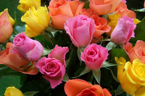 colorful-bouquet-of-roses-949756_1920_L.jpg